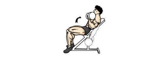 Bicepsový zdvih s jednoručkami na šikmé lavici