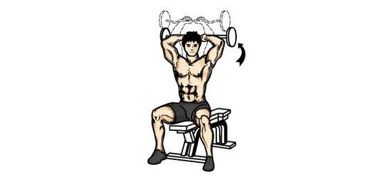 Tricepsový tlak vsedě