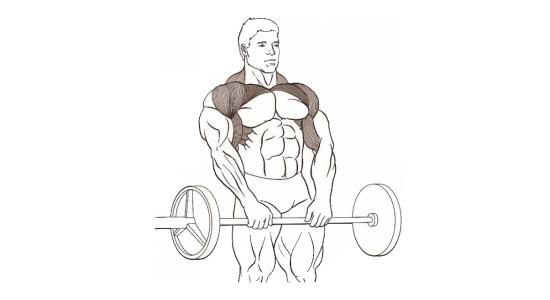 Zdvíhání ramen ve stoje s velkou činkou před tělem
