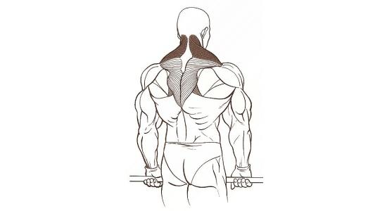 Zvedání ramen s velkou činkou za tělem