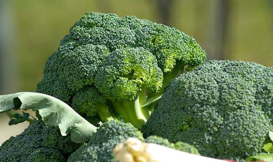 Zdravý jídelníček: Brokolice