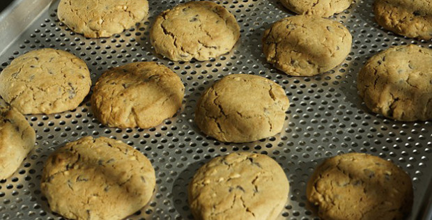 Oříškové sušenky ze 3 surovin